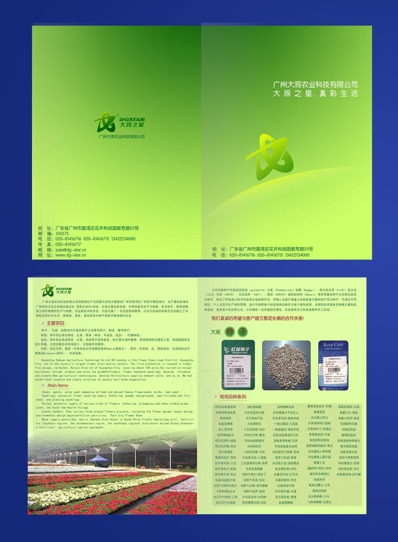 广州大观之星宣传册排版设计
