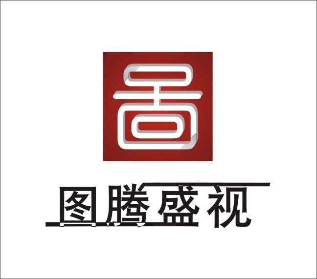 现金图腾盛视公司logo设计方案